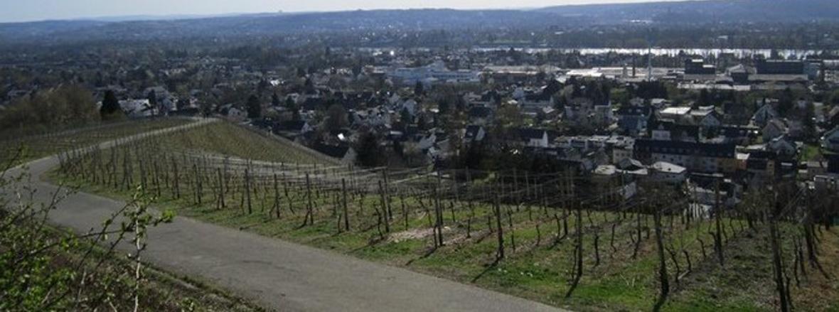 OV Dollendorf Slide 2