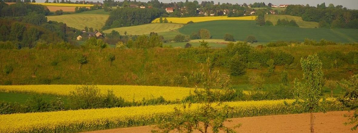 Slide 1 OV Stieldorf